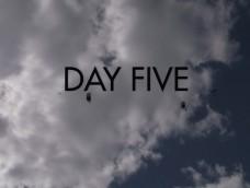 2014 USPA National Skydiving Championships, DAY 5- MORNING SHOW