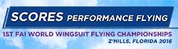 buttons-world-wingsuit_scores1