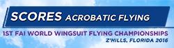 buttons-world-wingsuit_scores2